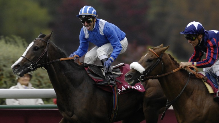 Naaqoos: son of Straight Lass wins the 2008 Prix Jean-Luc Lagardere at Longchamp