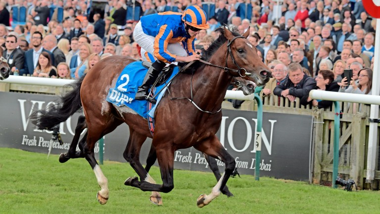 Churchill: 'It's a case of so far, so good', says Aidan O'Brien