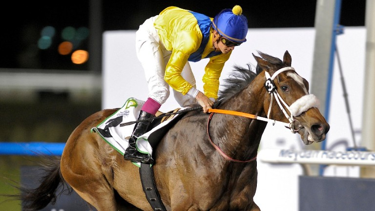 Mahbooba: the globetrotting daughter of Galileo often excelled at Meydan