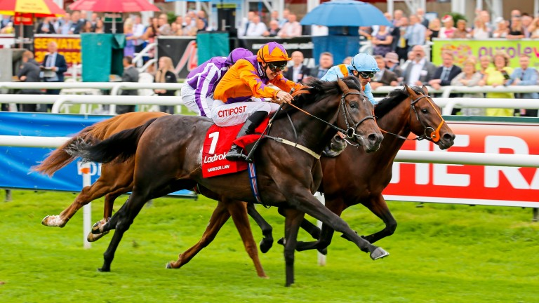 Harbour Law powering home in last season's St Leger