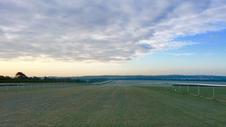 Chippenham gallops – Saeed Bin Suroor's escape