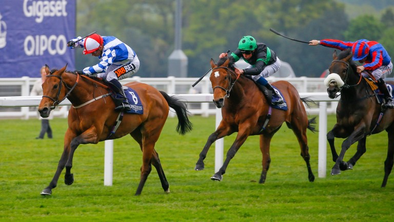 Sweet Selection is one of two chances for Hughie Morrison in the Prix Maurice de Nieuil