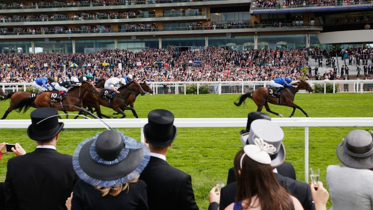 Punters cheer on their horses at Royal Ascot