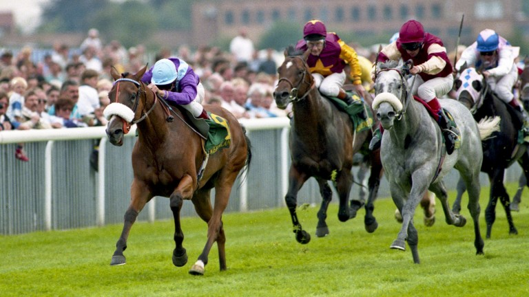 Lochsong: outstanding sprinter holds the track record over 5f at Newmarket