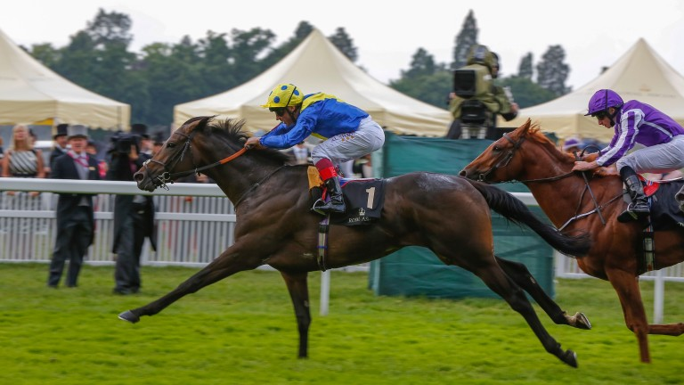 Across The Stars won the King Edward VII Stakes at Royal Ascot last year but has not run in 2017