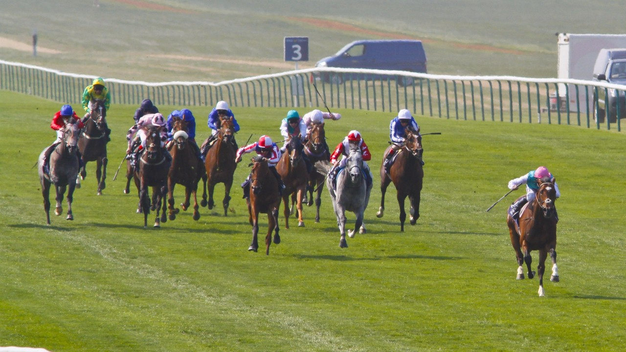 Winter proves too much for Rhododendron in 1000 Guineas at Newmarket