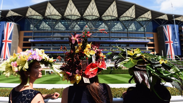 Royal Ascot: set to hold a minute's silence
