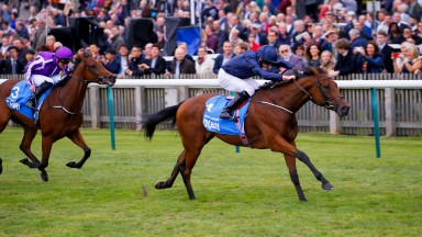 Rhododendron: daughter of Galileo is out of Irish 1,000 Guineas winner Halfway To Heaven