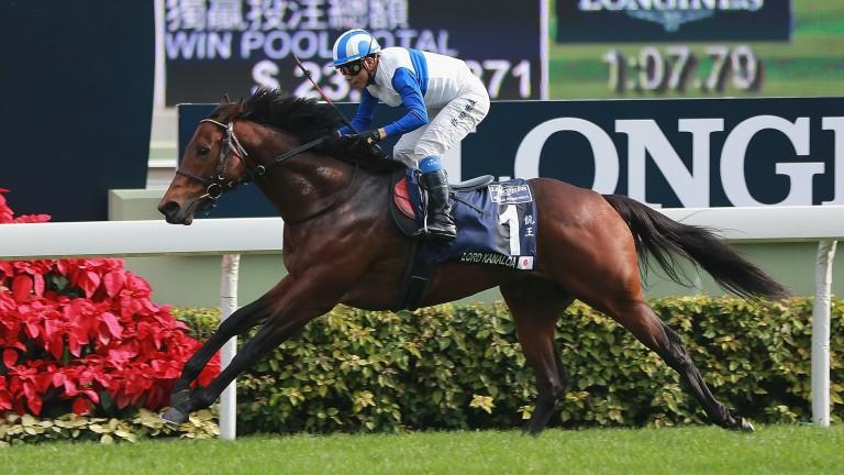 Lord Kanaloa wins the Group 1 Hong Kong Sprint