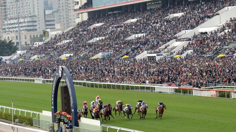 Sha Tin: Woods enjoyed success at the main racecourse stables