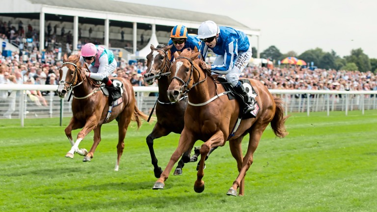 Queen Kindly: there's only one Guineas, says Richard Fahey