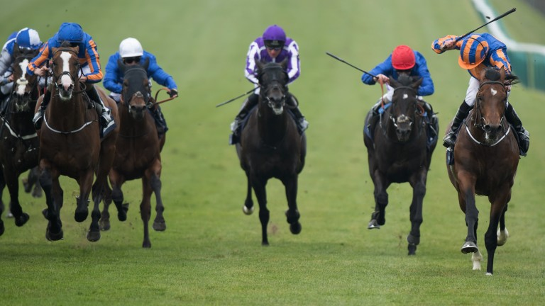 Churchill (right) becomes the third winner of the 2,000 Guineas for his sire Galileo