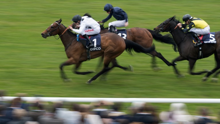 Marsha beat seven of the Temple Stakes field at Newmarket three weeks ago