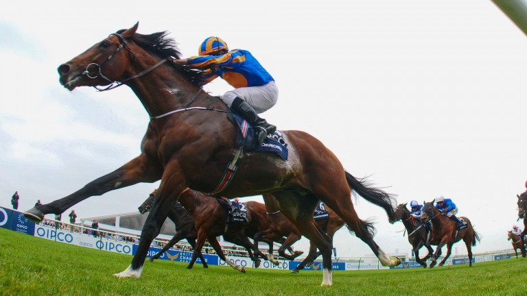 Churchill: could he be bound for Epsom?