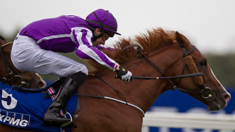 The United States: Ranvet Stakes winner hails from the family of Last Tycoon