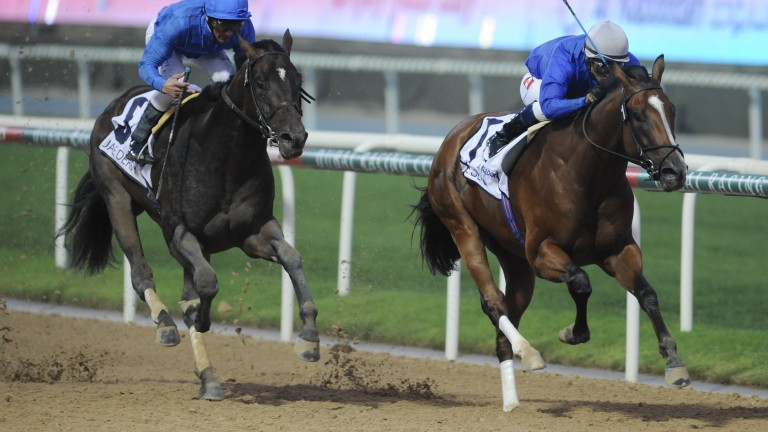 Regal Ransom (right): Saeed Bin Suroor's last Kentucky Derby runner finished eighth in 2009
