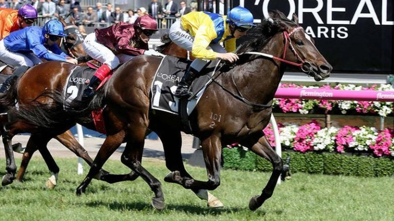 Rageese: son of Street Cry wins the Group 3 L'Oreal Paris Stakes at Flemington from the previously European-trained Arod