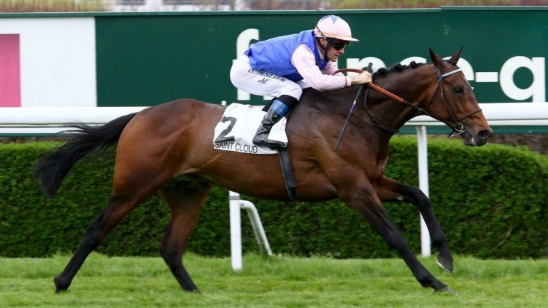Tiberian: the Group 3 winner was bred by Julian Ince, the Volz family and Stefan Falk