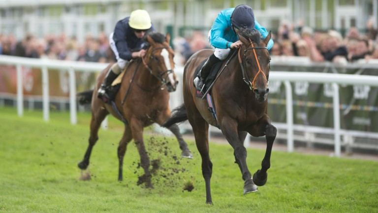 Brown Panther beats Hillstar in the Ormonde Stakes at Chester