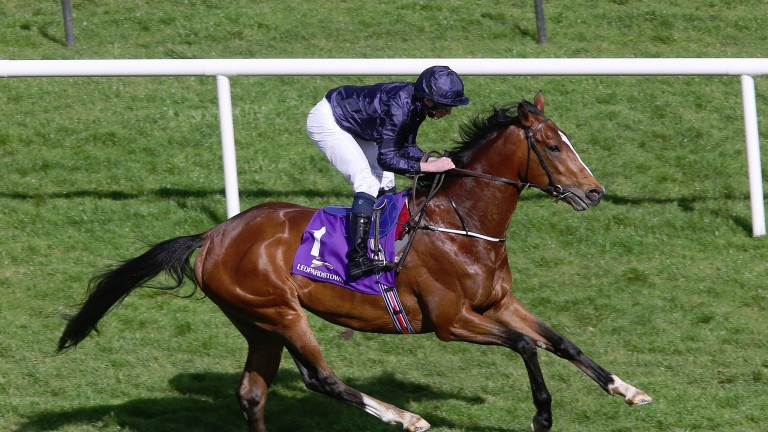 LEOPARDSTOWN SUN 12 APRIL 2015  PICTURE: CAROLINE NORRIS   RYAN MOORE EASES DOWN JOHN F KENNEDY TOWARD THE LINE AFTER HE HAD HAD A DISAPPOINTING RUN IN THE PW MCGRATH MEMORIAL BALLYSAX STAKES