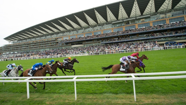 Nakeeta (nearside) is narrowly beaten by Chester Cup rival Sea Of Heaven in last year's Brown Jack Stakes at Ascot