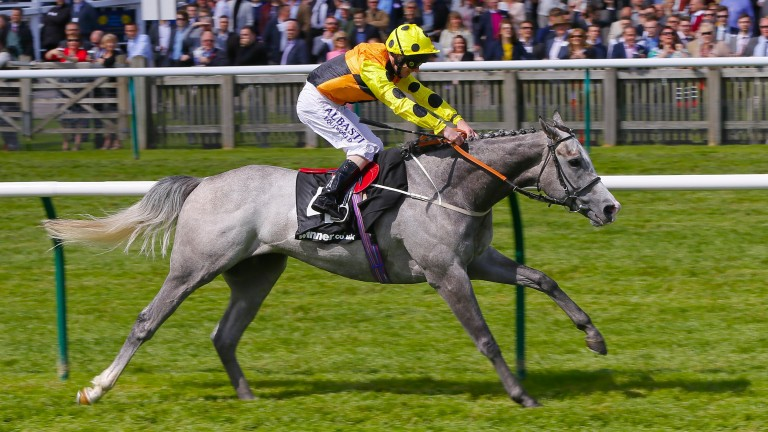 Watersmeet: has been running superbly on the all-weather