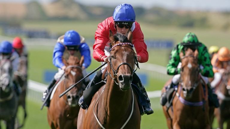 Penitent: won several Group races after winning the Lincoln
