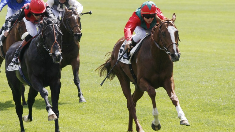 Lope De Vega: wins the 2010 Poule d'Essai des Poulains at Lonchamp