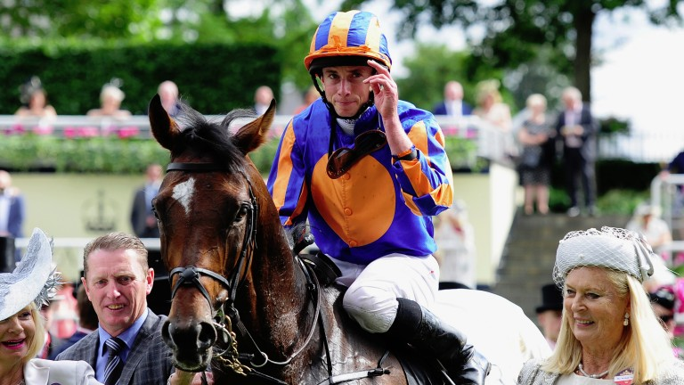 Order Of St George: looks back to his best and goes for the Irish St Leger