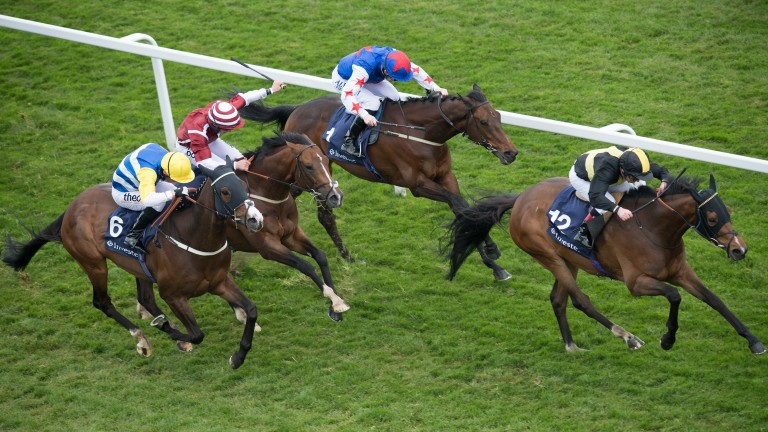 Brorocco (right) attempts to follow up his Epsom win