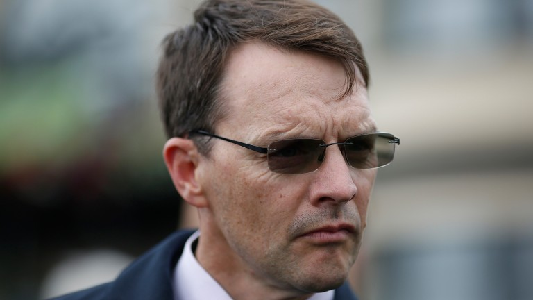 Aidan O'Brien is becoming more media friendly