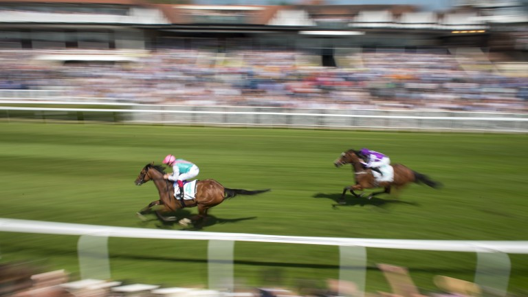 Enable: streaks clear of Alluringly in the Cheshire Oaks