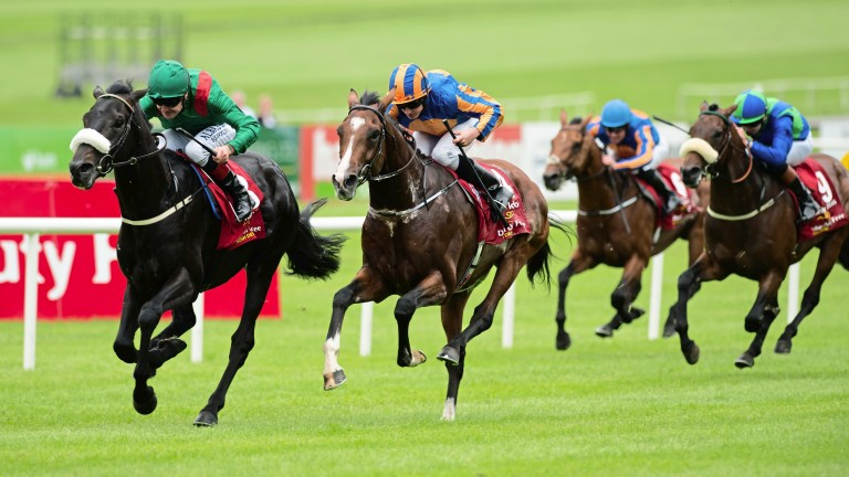 Harzand: completed the English and Irish Derby double at the track last year