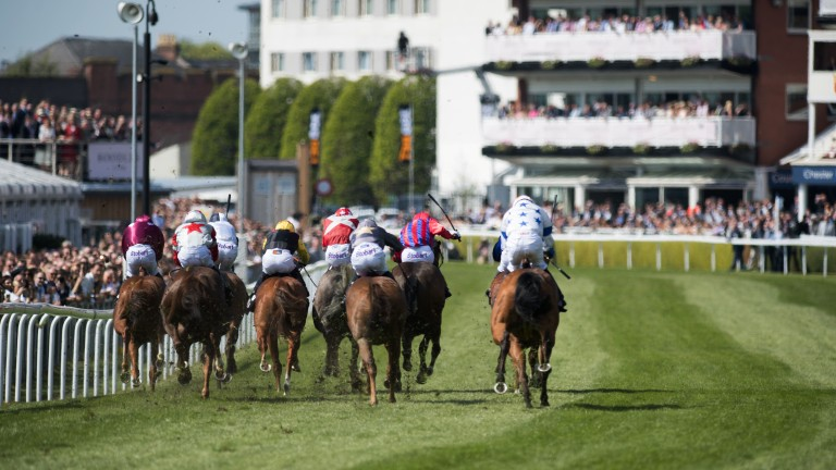 Fight to the finish: the runners in the 5f handicap head down the home straight