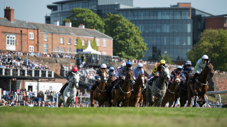 Tightly bunched: the Chester Cup field round the bend in front of the packed enclosures