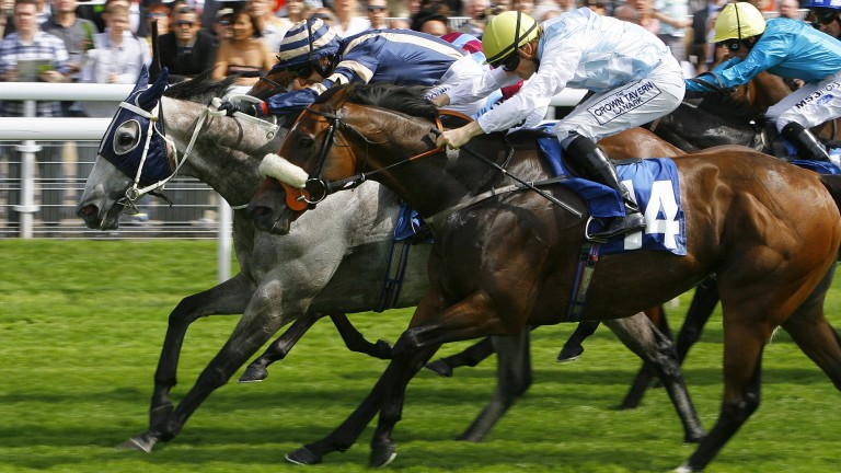 Secret Asset - George Baker wins from No14 Racy - Phillip Makin and Favourite Girl - Jimmy FortuneThe Symphony Group Stakes.York Ebor Festival17/8/2011.Pic Mark Cranham