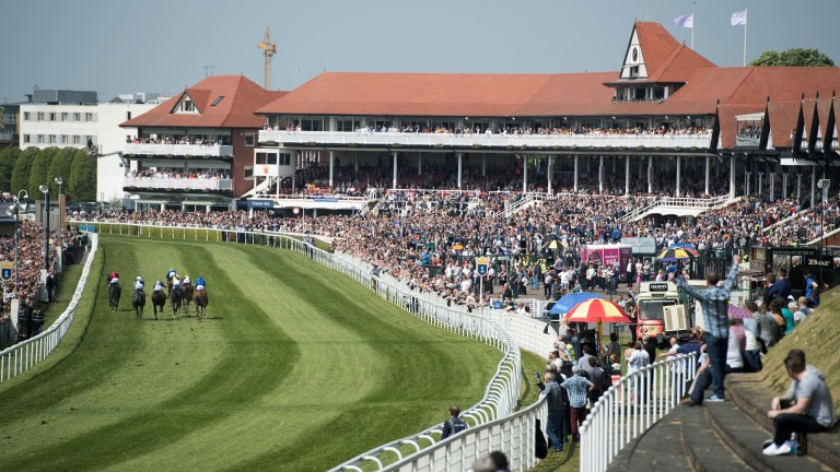 Approaching the winning post: runners in the first race sprint towards the finish in front of the stands