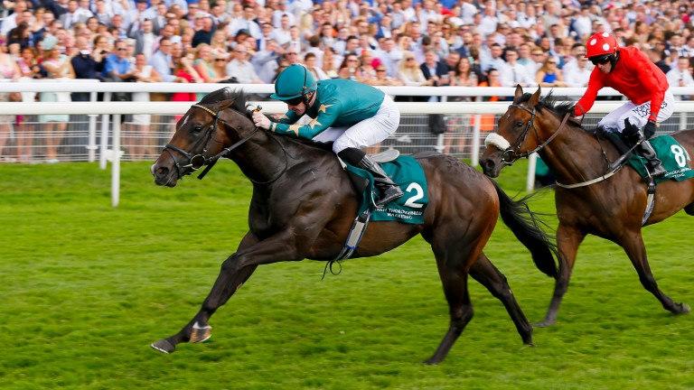 Ajaya (green) fends off the challenge of Ribchester to land the Group 2 Gimcrack Stakes at York