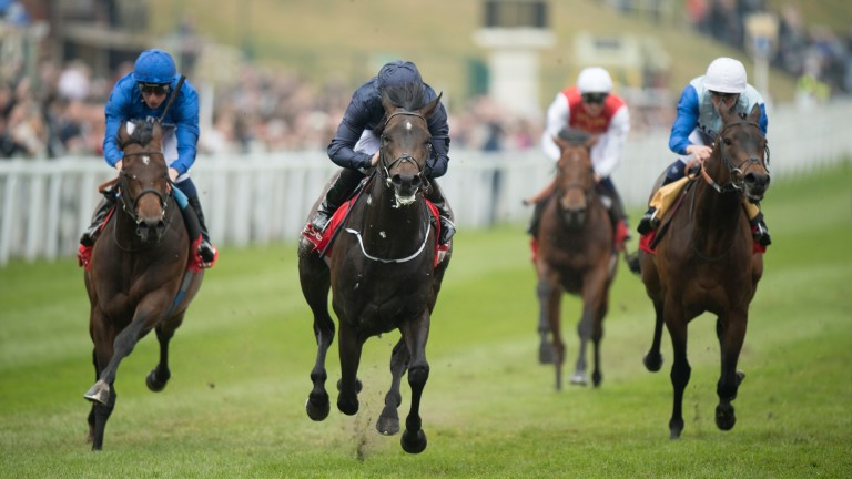 Cliffs Of Moher (centre) beats Bay Of Poets and (left) and Max Zorin in the Dee Stakes