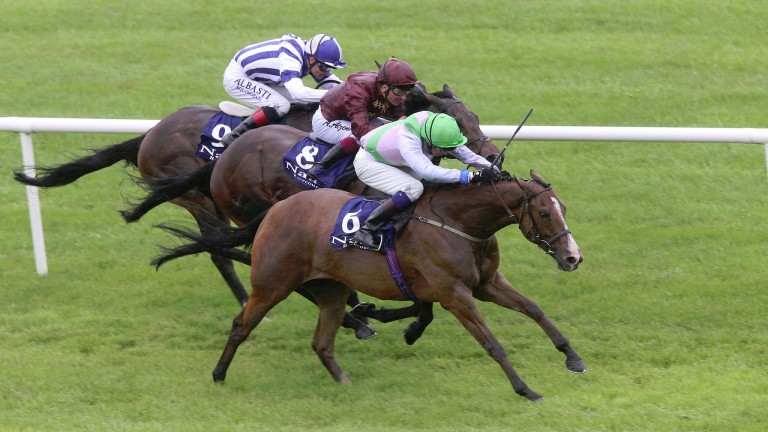 NAAS MON 1 JUNE 2015  PICTURE: CAROLINE NORRIS    HEAVEN'S GUEST RIDDEN BY JAMES DOYLE WINNING THE OWENSTOWN STUD STAKES FROM LAT HAWILL RIDDEN BY ANDREA ATZENI, 2ND, AND STAY DE NIGHT RIDDEN BY PAT SMULLEN, ON RAIL, 3RD.