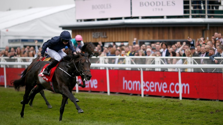 Cliffs Of Moher: Dee Stakes winner is one of 31 sons of Galileo entered in the Derby