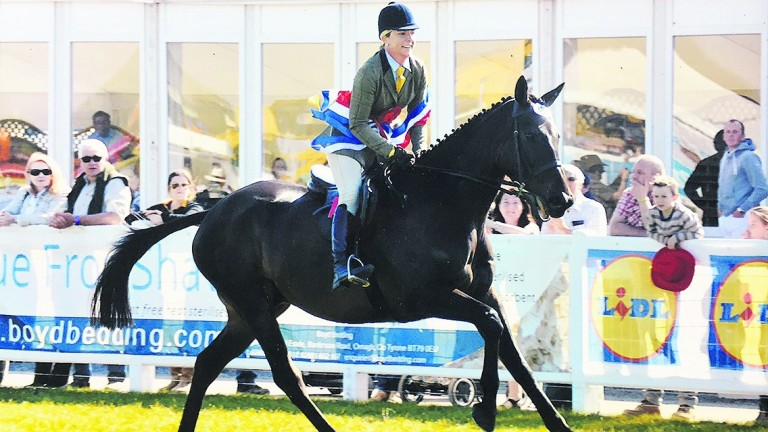 Lorna Murphy and Boston Bob in action at the Balmoral Show in County Antrim on Thursday