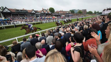 A sea of excited racegoers on the Roodee watch as Copper Knight and David Allan win the 5f handicap on the final day of Chester's May meeting