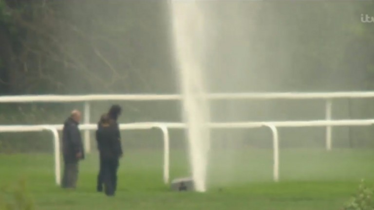 Ascot: unscheduled watering as pop-ip sprinker goes rogue on Saturday morning