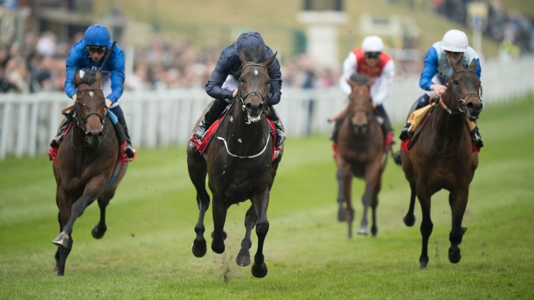 Deep Atlantic is the brother of the much-missed Cliffs Of Moher (navy)