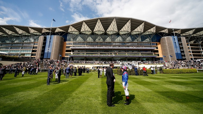 Profits at Ascot have risen for a fifth successive year