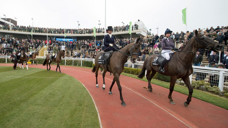 The Retraining of Racehorses parades have highlighted the roles thoroughbreds can take on after racing