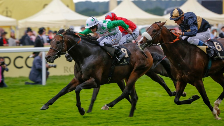 Twilight Son (nine): on his way to winning the Diamond Jubilee Stakes in 2016