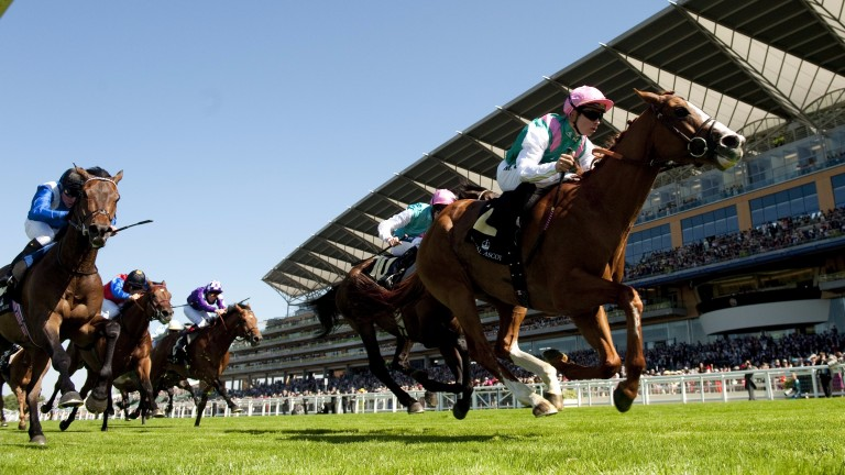 Byword: is a half-brother to Finche, who made a winning debut on Sunday