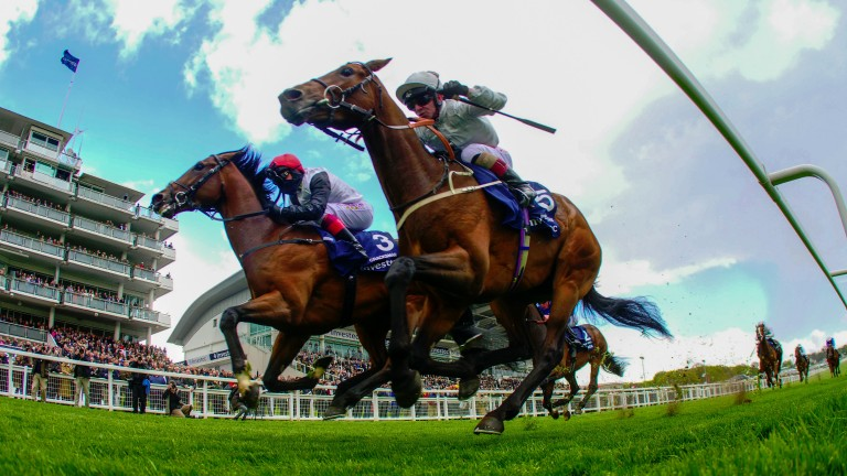 Cracksman and Frankie Dettori (left) grab Permian in the final stride at Epsom last month